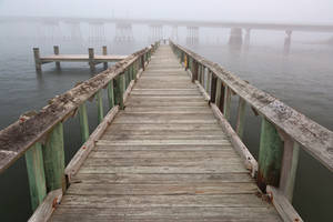 Misty Assateague Pier by boldfrontiers