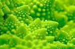 Macro Romanesco Broccoli