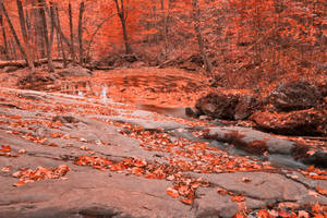 Ruby Hollow Whirlpool by boldfrontiers