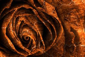 Burning Grunge Rose (freebie) by boldfrontiers