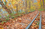 Abandoned Autumn Railroad