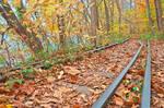 Abandoned Autumn Railroad