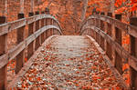 Ruby Red Autumn Bridge