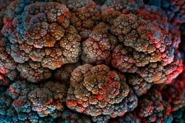 Cosmic Cauliflower (freebie)