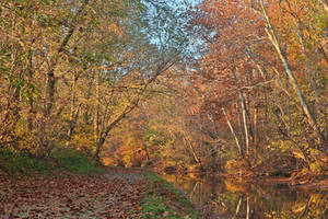 Autumn Pennyfield Canal by boldfrontiers