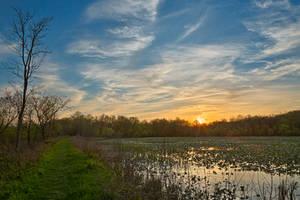 McKee-Beshers Sunset Marsh (freebie) by boldfrontiers