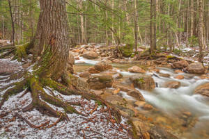 Sabbaday Winter Brook by boldfrontiers
