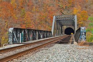 Autumn Graffiti Train Track