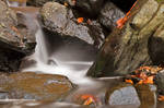 Glen Artney Stream III