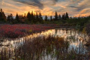 Autumn Dolly Sods Sunset II by boldfrontiers