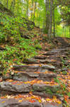 Rustic Autumn Staircase