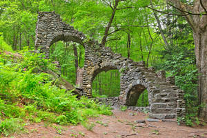 Forest Castle Ruins