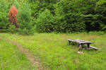 Off the Beaten Picnic Trail