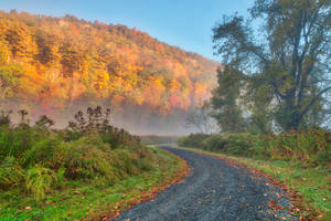 Misty Autumn McDade Trail by boldfrontiers