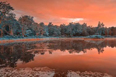 Opalescent Twilight Marsh