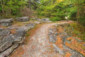 Spruce Knob Stone Trail by boldfrontiers