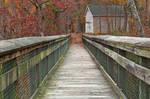 Rustic Autumn Boardwalk