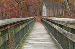 Rustic Autumn Boardwalk