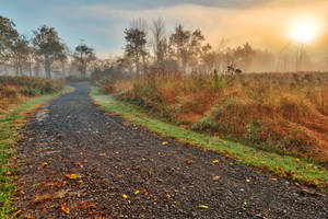 Misty McDade Sunrise by boldfrontiers