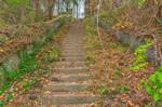 Abandoned Autumn Stairway