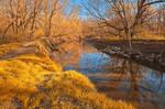 Gold Rock Creek