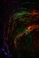 Aurora Mossealis by boldfrontiers