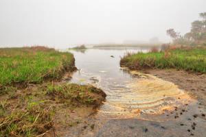 Misty Foam Marsh by boldfrontiers