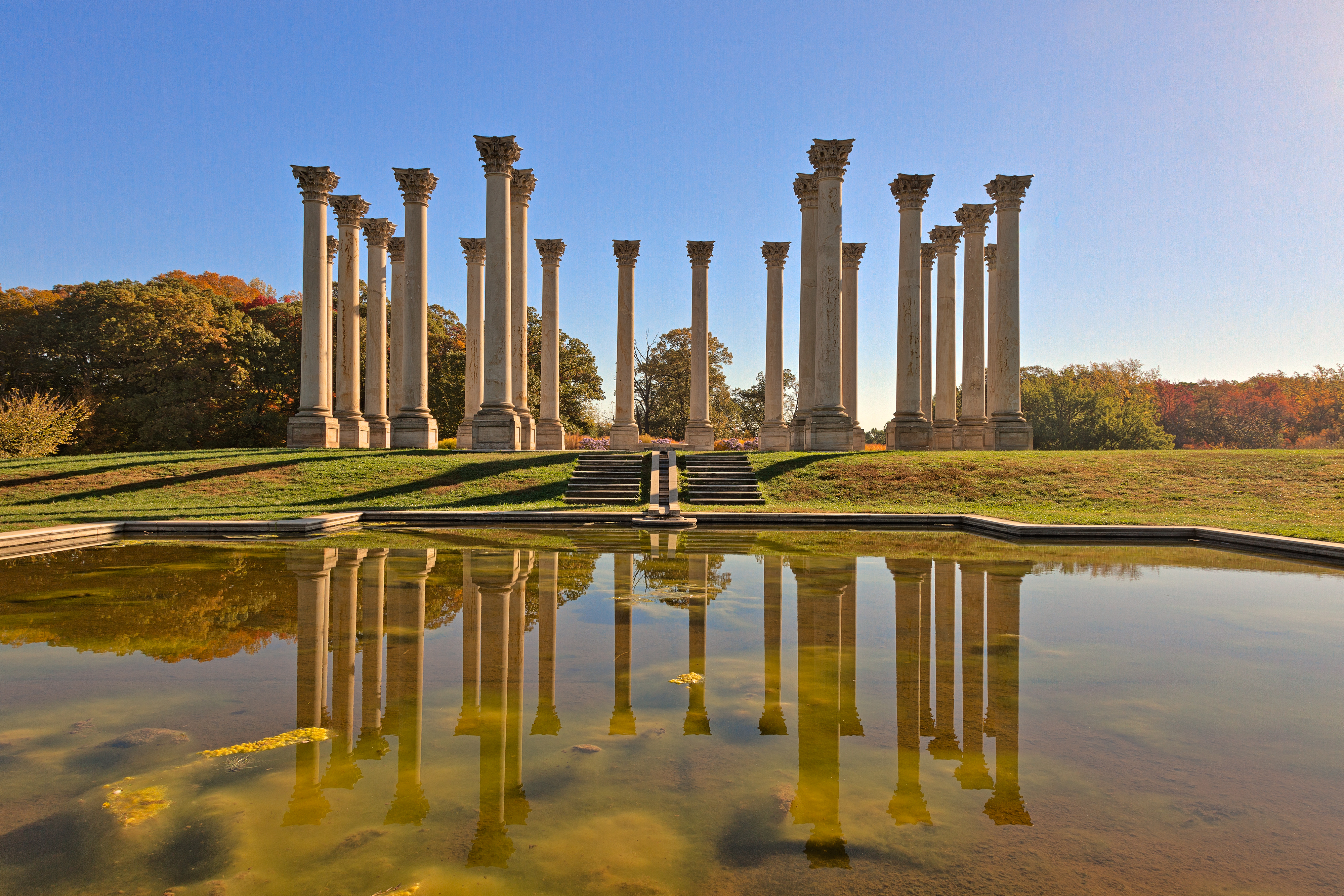 Capitol Arboretum Columns Iii Freebie By Somadjinn On