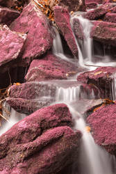 Pink Moss Waterfall by boldfrontiers