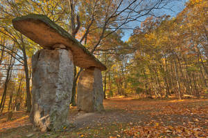Autumn Megalith Forest by boldfrontiers