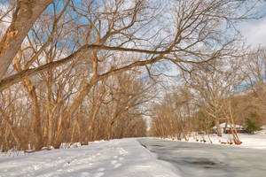 Winter Canal Trail by boldfrontiers