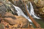 Rose River Falls II