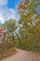 Winding Autumn Forest Road - Green Ridge by boldfrontiers