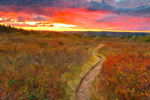 Twilight Oil Impressions of Dolly Sods by boldfrontiers