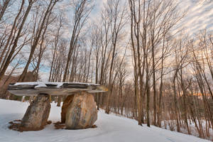 Winter Dolmen Forest by boldfrontiers