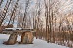 Winter Dolmen Forest