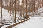 Rustic Winter Bridge Trail