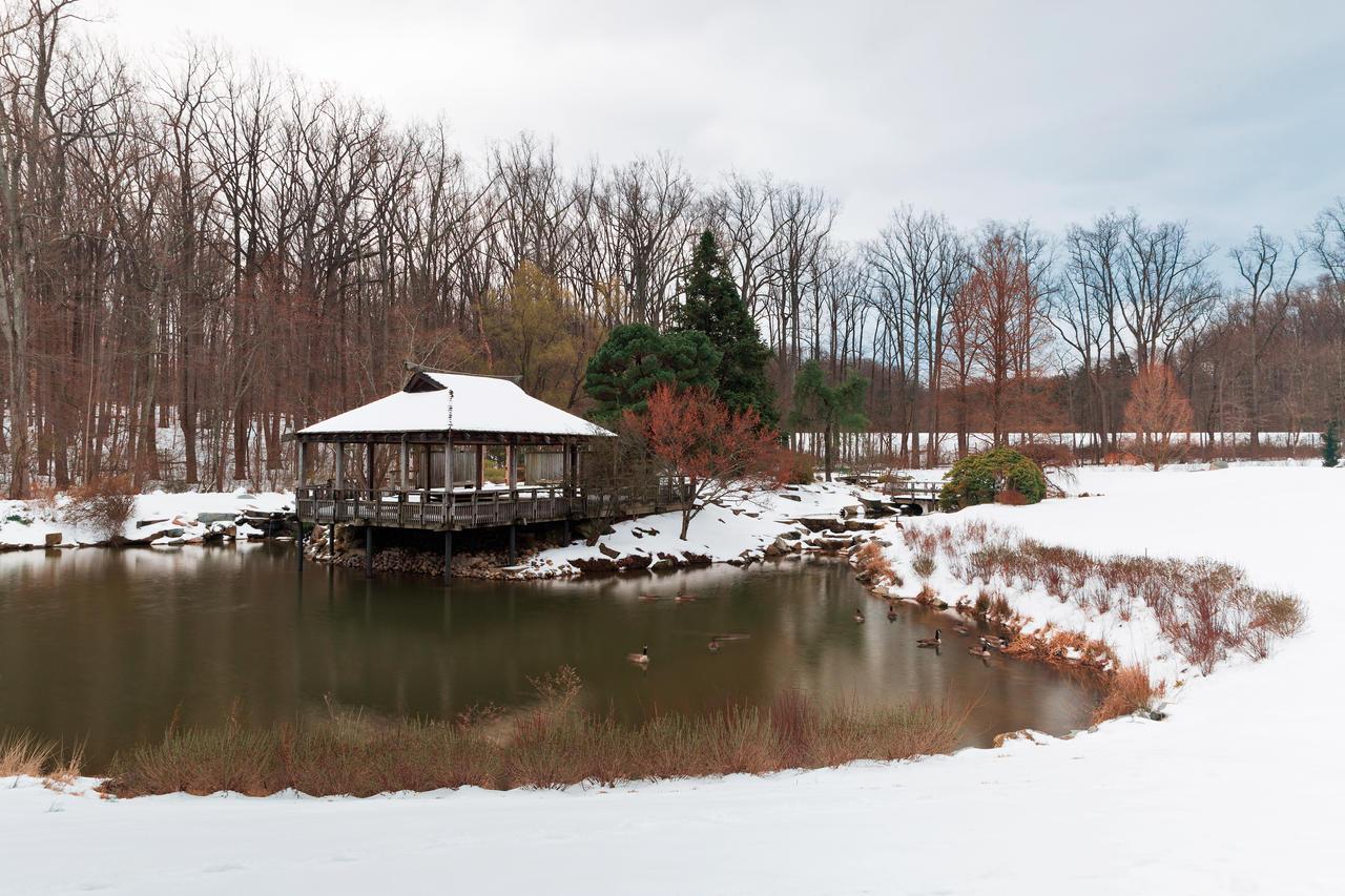 Brookside Winter Spring Gardens by somadjinn