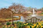 Meadowlark Spring Gardens II