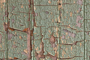 Cracked Wood Paint by boldfrontiers