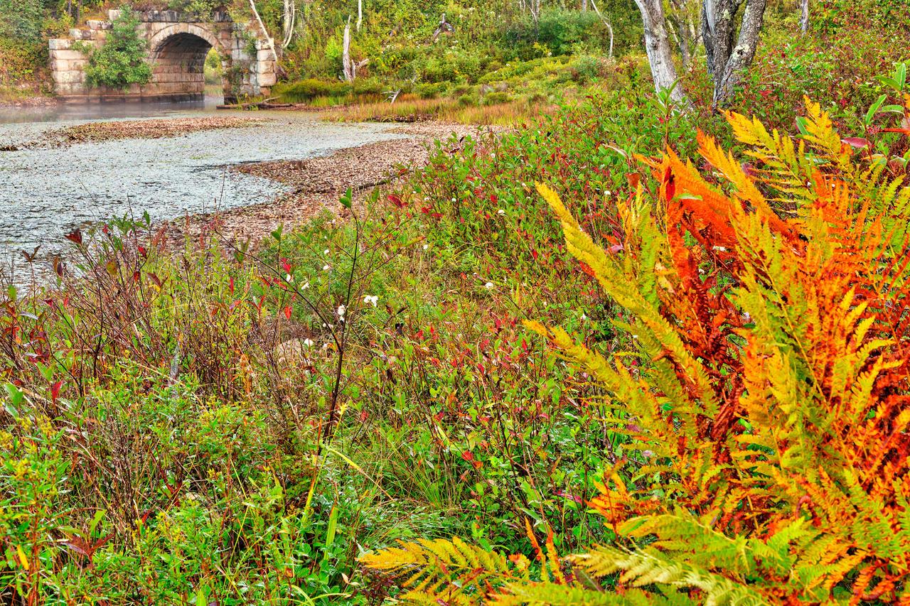 Rustic Pendleton Autumn By Somadjinn On Deviantart