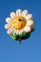 Smiling Daisy Air Balloon (freebie) by boldfrontiers