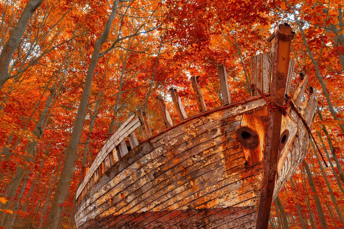Fall Forest Shipwreck by somadjinn