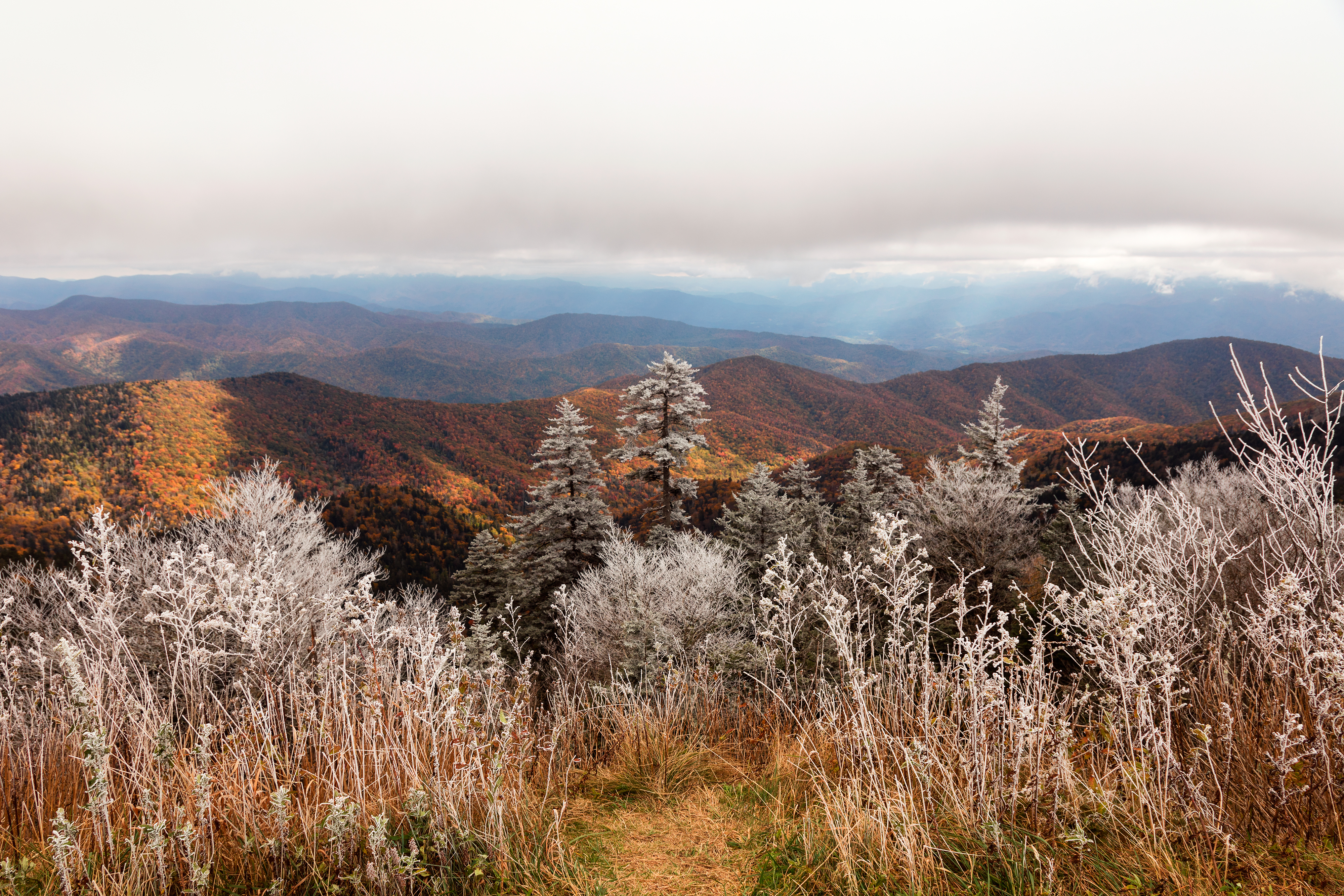 Frosted Autumn Smoky Mountains (freebie) by somadjinn