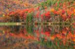 Autumn Reflections - Sherando Lake