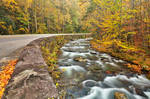 Winding River Road - Great Smoky Mountains