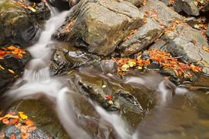 Glen Artney Stream (freebie) by boldfrontiers