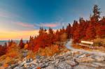 Spruce Knob Twilight Trail - Autumn Fantasy