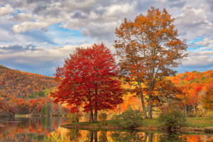 Autumn Foliage of Sherando Lake by boldfrontiers