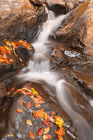 Autumn Fossil Stream by boldfrontiers